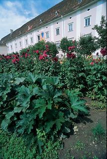 Kaiserhof von Stift Altenburg
