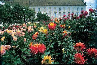 Blütenmeer in den Innenhöfen von Stift Altenburg