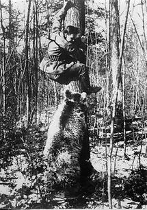 Der Jäger als Gejagdter