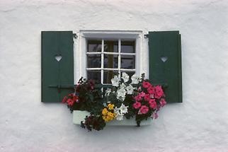 Fenster eines Bauernhauses in Abtenau