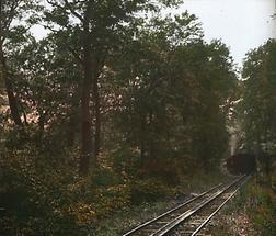 Die Zahnradbahn auf dem Kahlenberg