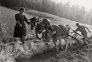 Bergbauern im Ötztal