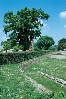 Rekonstruktion eines röm. Kräutergartens in Carnuntum