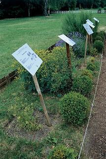 Schautafeln im Kräutergarten von Carnuntum