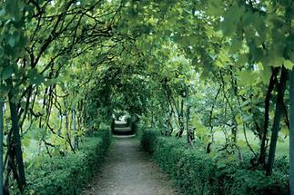 Garten des Redemptoristenklosters