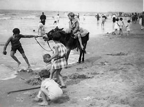 Kinder und ein Esel an einem Strand