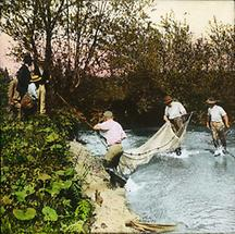 Netzfischer in den Donauauen