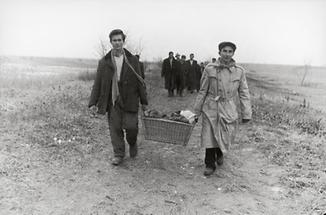 Ungarische Flüchtlinge (1)