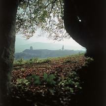 Benediktinerstift Michaelbeuern in Salzburg