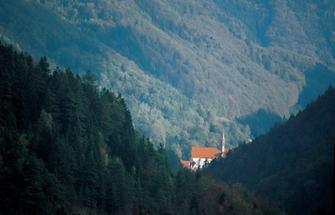 Blick auf die Kirche der Kartause Gaming