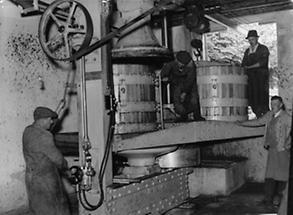 Die größte Weinpresse Österreichs