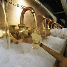 Brauerei Ottakring (1)