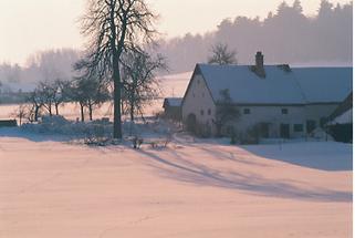 Bauernhof im Eisenbergeramt bei Gföhl (1)