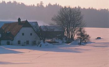 Bauernhof im Eisenbergeramt bei Gföhl (2)