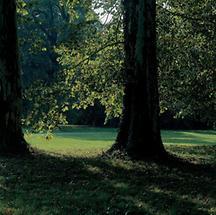 Landschaftspark von Schloss Grafenegg