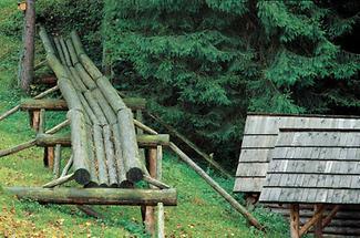 Holzriese im Forstmuseum Silvanum