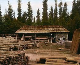 Holzplatz im Höllental