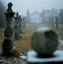Parkalle von Schloss Harmannsdorf