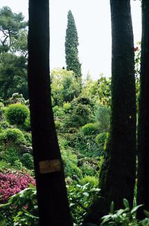 Im Garten von André Heller (3)