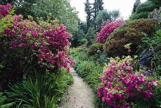 Weg im Garten von André Heller in Gardone