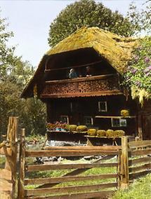 Bienenkörbe vor einem Haus im Joglland