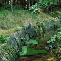 Schwarzenbergscher Schwemmkanal