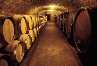Weinkeller in Kapfenstein, Steiermark