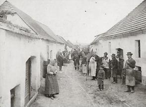 Weinlese in Langenlois