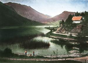Der Lunzer See