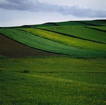 Wiesen bei Marbach im Felde