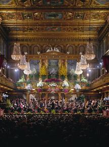 Neujahrskonzert der Wiener Philharmoniker (1)