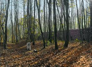 An der Lainzer Tiergartenmauer
