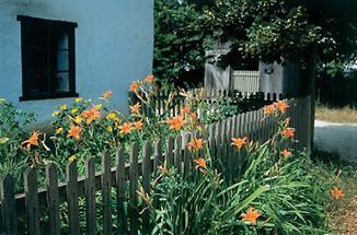 Gartenkultur in Niedersulz
