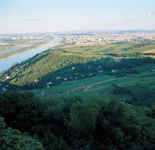 Blick vom Leopoldsberg