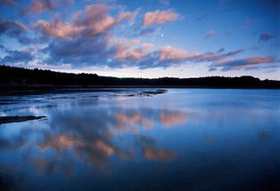 Zieringser Teich bei Ottenstein