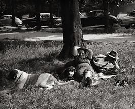 Sommerliche Entspannung im Prater