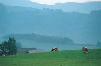 Altes Bauernland vor den Bergen