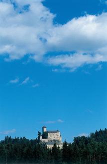 Blick auf die Burg Rappottenstein