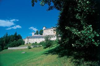 Blick über Wiesen auf Burg Rappottenstein