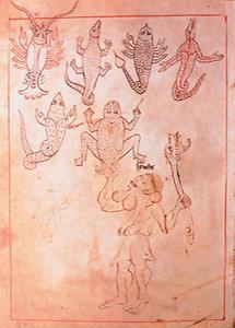 Illustration aus dem Reiner Musterbuch: Tierbilder