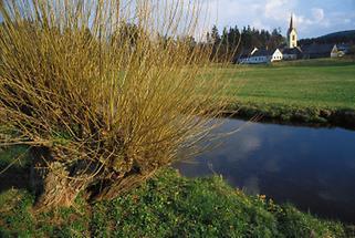 Dorf Rosenau an der Zwettl