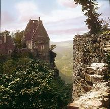 Die Burgruine Aggstein