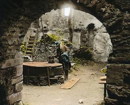 Ruine Aggstein (1)