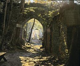 Ruine Aggstein (2)