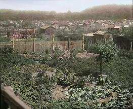 Schrebergärten bei der Schlachthausbrücke