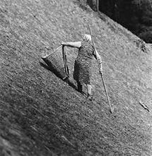 Grasen am Steilhang