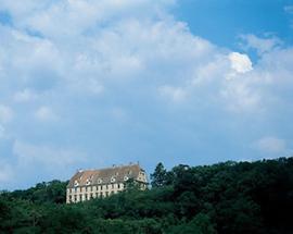Schloss Stetteldorf