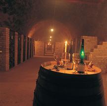 Im Weinkeller von Peter Dolle