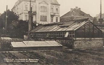 Glashaus der Hochschule für Bodenkultur