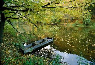 Ein Boot auf der Thaya